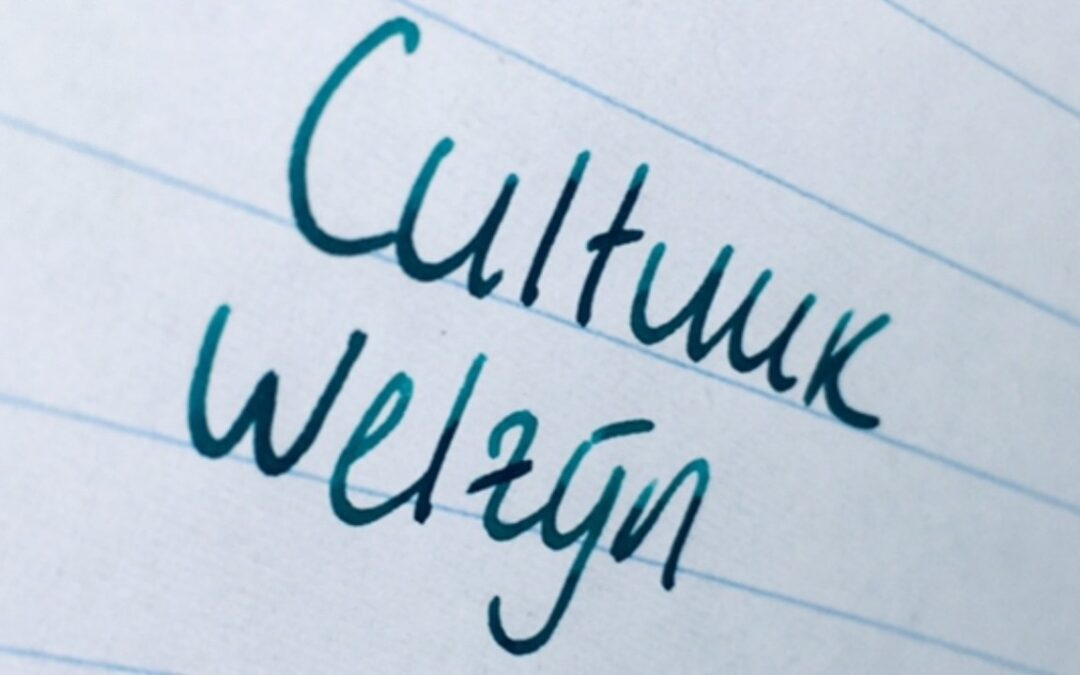 Welzijn Beweegt Elke Cultuur Vooruit